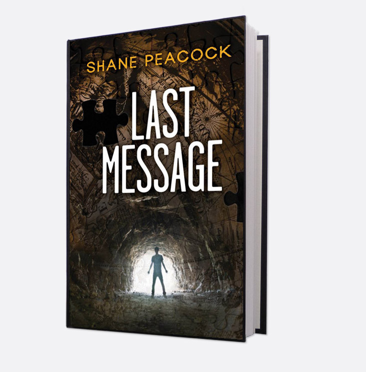 Book cover, Last Message